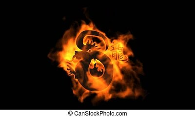 chinese zodiac of fire dragon and h