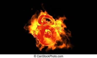 chinese zodiac of fire dragon and handwriting chinese kanji, china tradition festival.