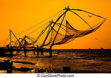 chino, fishnets