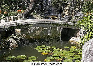 chino, jardín