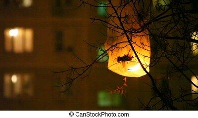 chinois, arbre, accroché, incandescent, nuit, était, lanterne