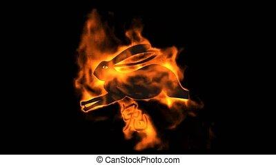 chinois, brûler, lapin zodiaque