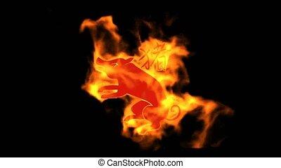 chinois, cochon, brûler, zodiaque