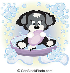 chiot, bain
