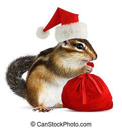 Chipmunk in red Santa Claus hat with Santas bag