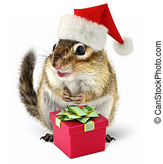 Chipmunk in red Santa Claus hat with gift box