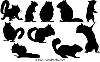 Chipmunk Silhouette vector illustration