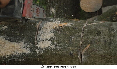 chippings flying from chainsaws - chippings flying from a...