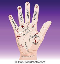 chiromancja, czytanie, dłoń
