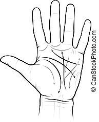 Chiromancy Chart of a Palm (L) - Chiromancy Chart of a Palm:...