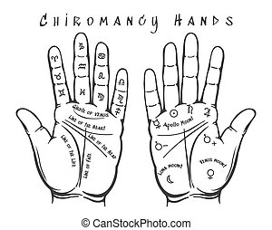 Chiromancy hands illustration - Chiromancy hands. Palmistry...