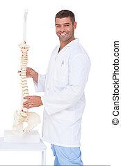 chiropracteur, projection, appareil photo, modèle, dos