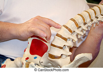 Chiropractic - chiropractor pointing at spine