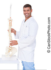 Chiropractor showing spine model to camera on white...