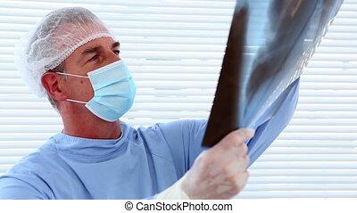 chirurg, badając, xray