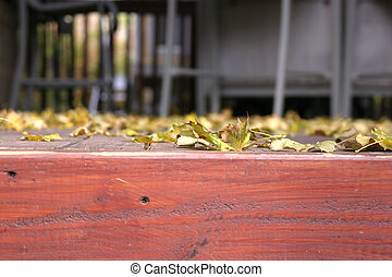 chiudere, foglie, su, cadere