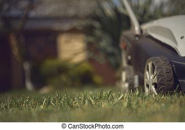 chiudere, house., cortile posteriore, professionale, nero, erba, equipment., prato, paese, grigio, falciatura, su, falciatore, verde, cura, giardinaggio