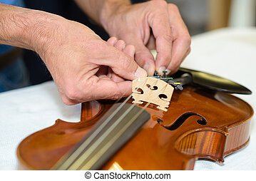 chiudere, violino, su, mani, riparazione