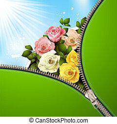 chiusura lampo, rose, metallico