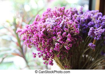 Chive purple plant