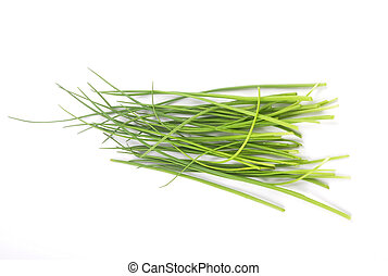 Chives on white background