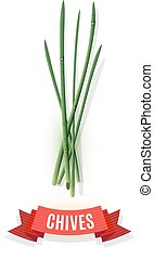 Chives stems and comic shaded ribbon banner isolated on...