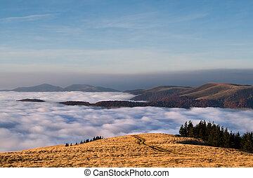 chmury, barwny, autumn krajobraz, pod, góry., wschód słońca