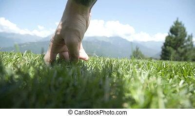 chmury, pieszy, przeciw, obejrzany, trawa, jon, bok,...