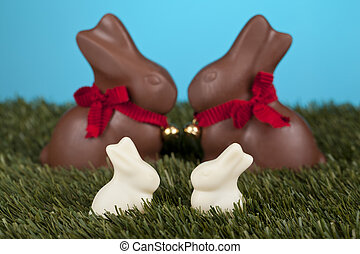 chocolate and milk bunnies
