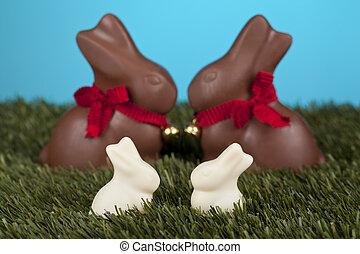 chocolate and milk bunnies