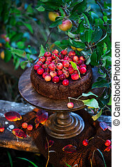 Chocolate apples cake .Outdoor photo