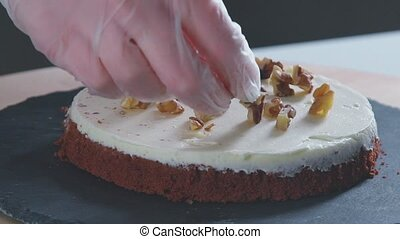 Chocolate cake with cream and walnuts. Close-up of pastry cake