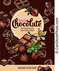 Chocolate with spices sketch poster of sweet food and desserts vector design. Candies and bar pieces of dark and milk chocolate with mint, truffle and praline, vanilla, cinnamon and star anise
