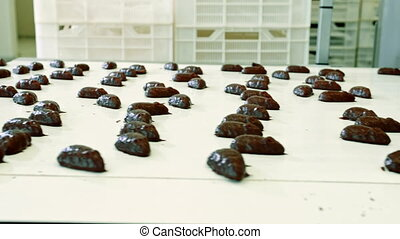 Chocolate candies lying on conveyor. Candy factory.