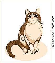 chocolate cat
