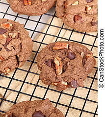 Chocolate Chip and Nut Cookie