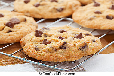 Chocolate Chip Cookies - Warm, golden brown, chocolate chip...