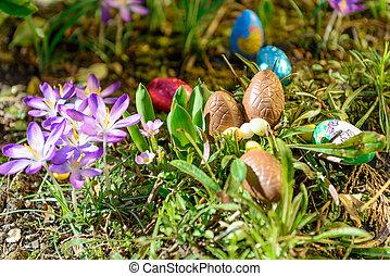Chocolate Easter eggs in a garden
