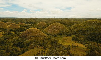 Chocolate Hills in Bohol, Philippines, Aerial view. -...