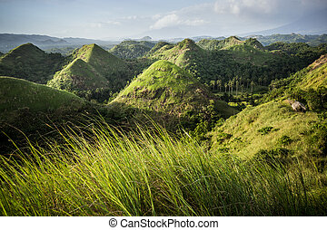 Chocolate Hills in the Bohol province