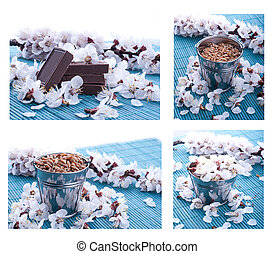 Chocolate with nuts on a background