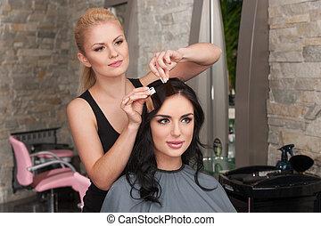 choix, de, tonalité, de, cheveux, dans, cheveux, salon.,...