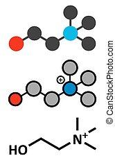 Choline essential nutrient molecule. Stylized 2D renderings ...