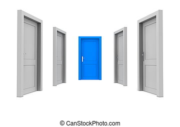Choose the Blue Door - abstract hallway with closed gray...