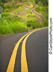 Choose Your Path - winding road traveling up a hillside