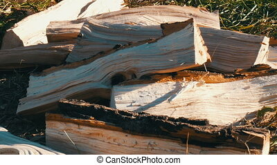 Chopped firewood lies on a ground - Chopped firewood lies on...