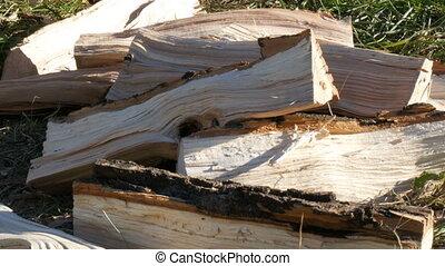 Chopped firewood lies on a ground - Chopped firewood lies on...