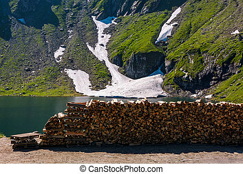chopped firewood on the shore of a glacier. beautiful summer...