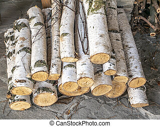 Chopped wood from a birch tree for a stove.