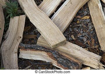 Chopped wood lying on the ground